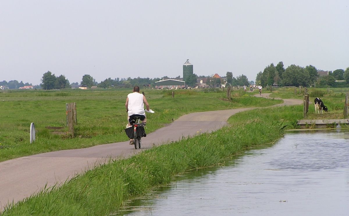 Veenweides in Waterland (foto: Ronald)