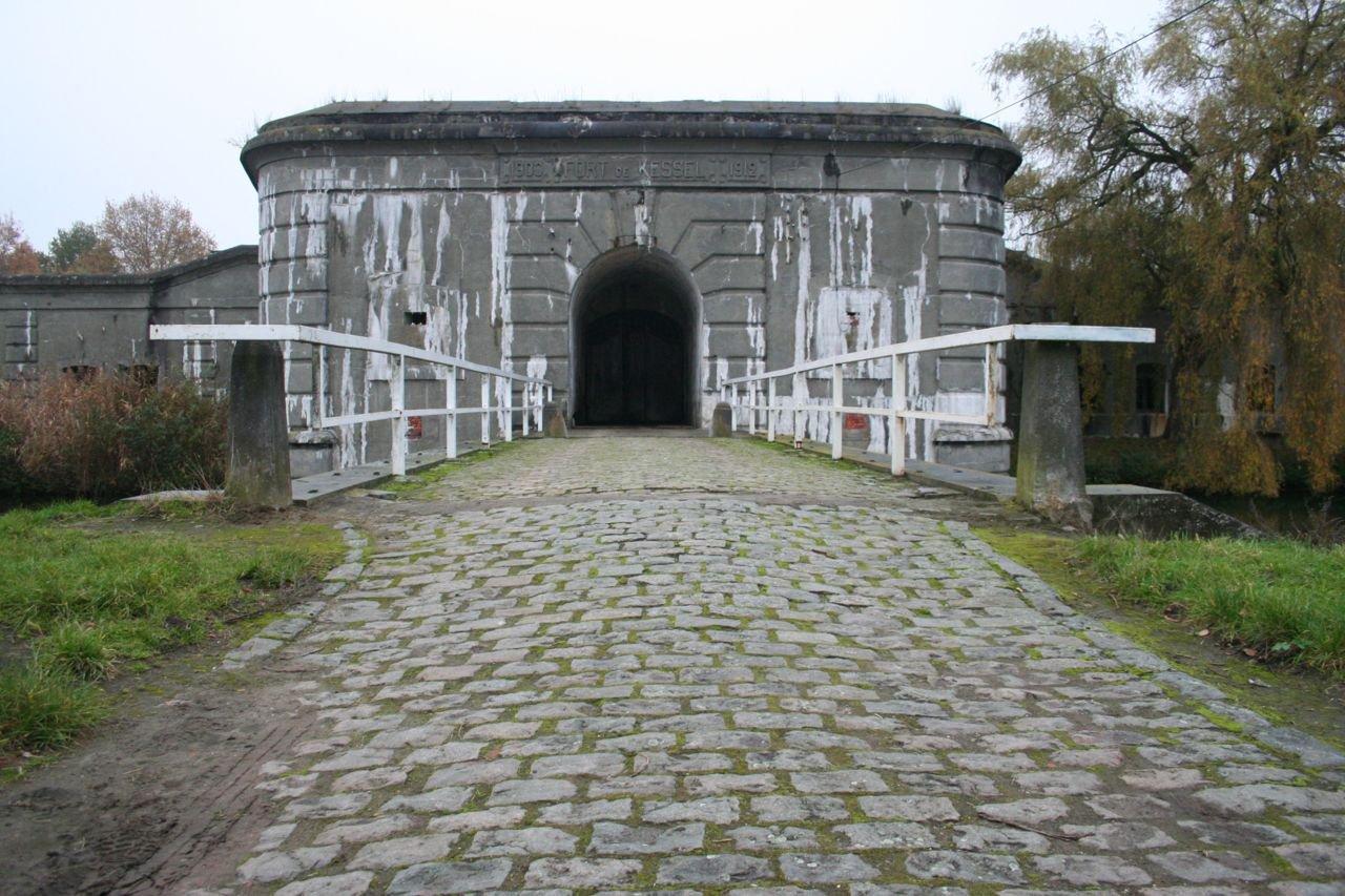 Ruim de helft van alle Vlaamse vleermuizen overwinteren in de forten rond Antwerpen. (foto: Diederik Willems)