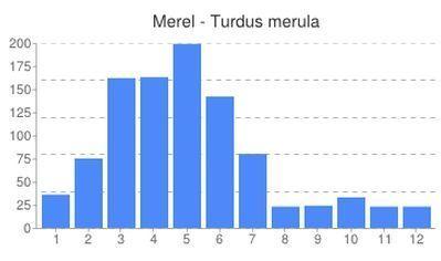 Aantal dode merels per maand gemeld op Waarnemingen.be sinds 2008