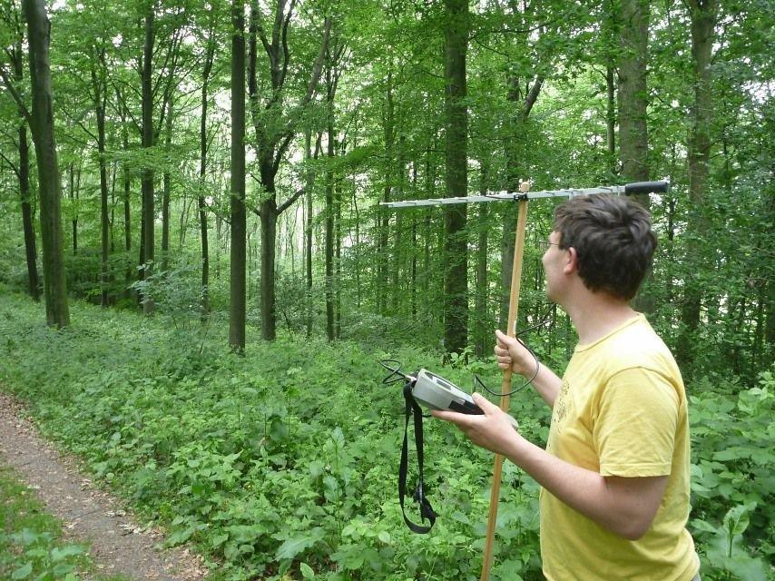 Onderzoek naar gezenderde wilde katten in Zuid-Limburg (foto: ARK)