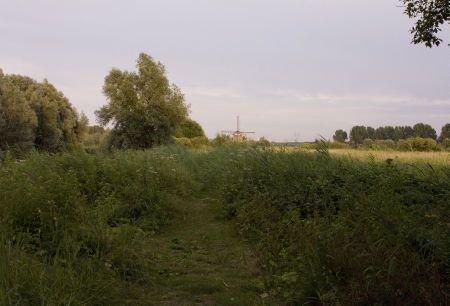 Onderzoeksgebied Koudenhoorn (foto: René Wanders)