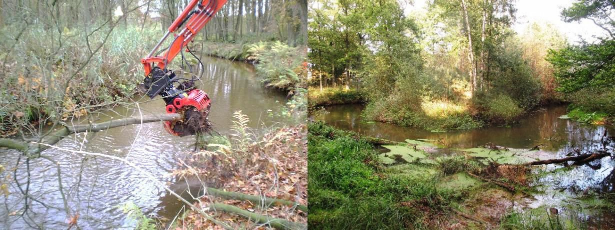 Links het inbrengen van dood hout in de Tongelreep in 2011. Rechts de Tongelreep drie jaar later op 26 September 2014 (foto links: Mark Scheepens; foto rechts: David Tempelman)