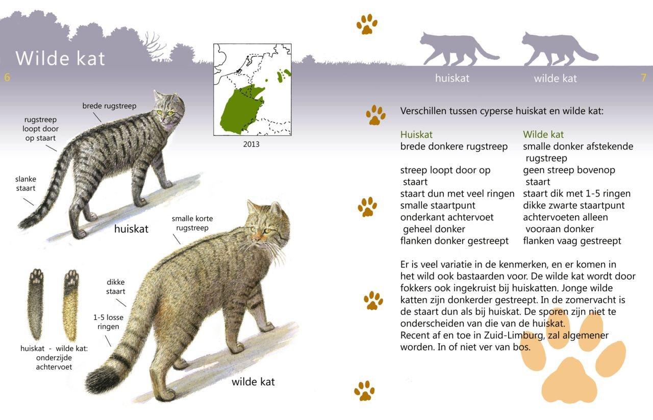 Gratis Roofdierapp Voor Herkennen West Europese Roofdieren